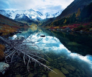 mountains, tree, and water image