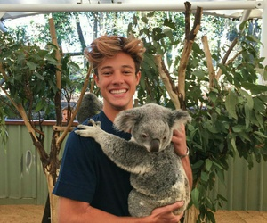 cameron dallas, Koala, and boy image