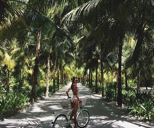 girl, green, and palms image
