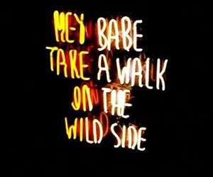 wild side, neon, and quotes image