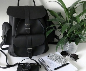 black, bag, and plants image