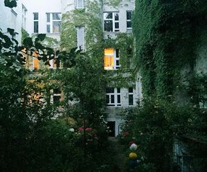 city, garden, and ivy image