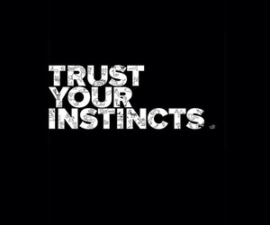 quotes, trust, and instincts image