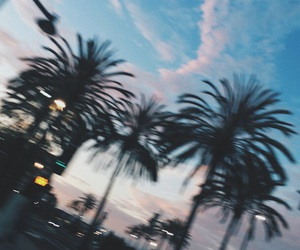 grunge, palm trees, and sky image