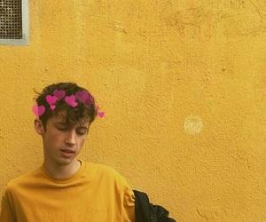 yellow, troye sivan, and aesthetic image
