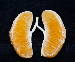 lungs, orange, and fruit image