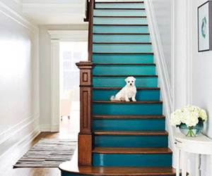stairs, blue, and dog image