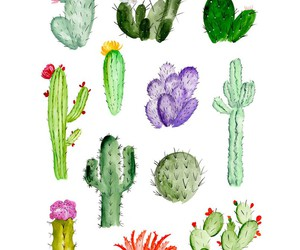 cactus, art, and wallpaper image