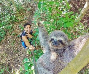 animal, selfie, and nature image