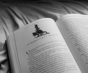 beautiful, harry potter, and book image