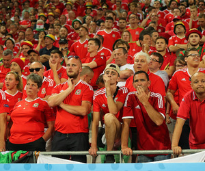 fans, football, and euro 2016 image