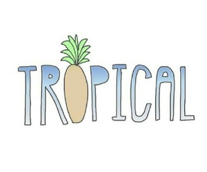 tropical, pineapple, and transparent image