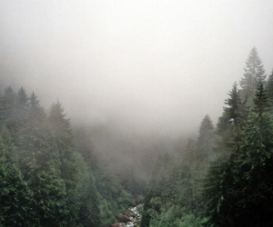Alps, fog, and mountains image