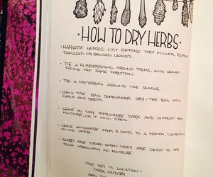 herbs, witchcraft, and secrets image
