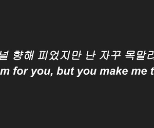 korean, kpop, and Lyrics image