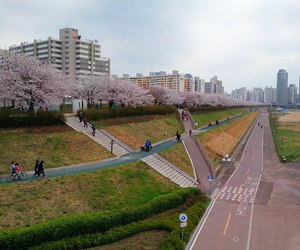 asia, park, and olympic park image
