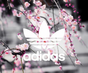 adidas, wallpaper, and flowers image