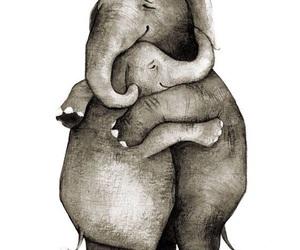 elephants and hug image