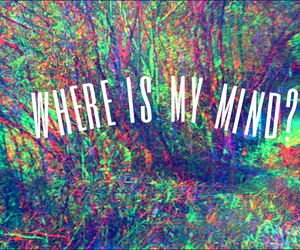 is, mind, and my image