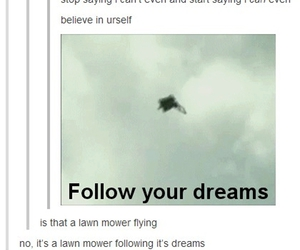 dreams, funny, and lawn mower image