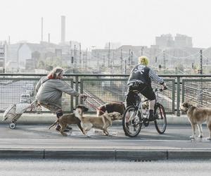 berlin, punks, and bike image