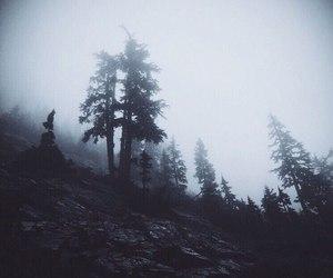 black, dark, and foggy image