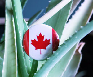 canada, etsy, and love image