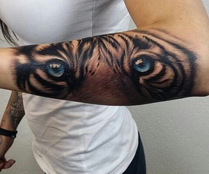 arms, tiger, and blue eyes image