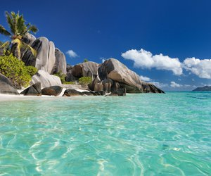 beach, travel, and seychelles image