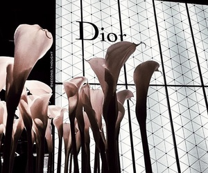 dior, flowers, and vogue image