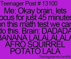 brain, math, and funny image