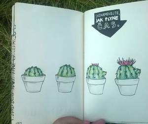 cactus, draw, and wreck this journal image