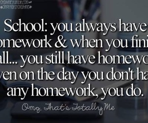 homework, lol, and school image