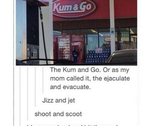 tumblr, funny, and hilarious image