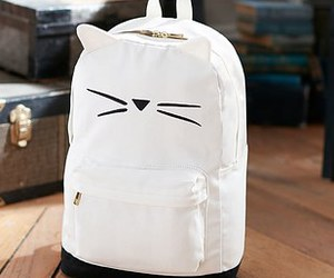 bag, cats, and love image