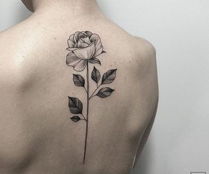 fashion, rose, and pale image