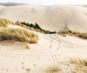 nature, sand, and aesthetic image
