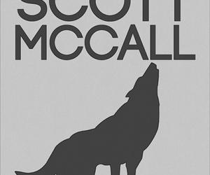teen wolf and scott mccall image