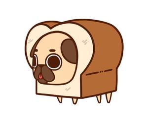 dog and puglie pug image