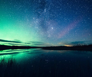 stars and nature image