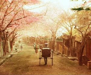 japan, photography, and sepia image