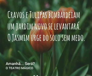 brasil, trechos, and frases image