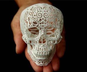 skull, white, and art image
