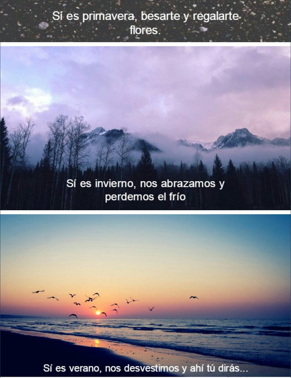 Frases Frase Phrases Phrase Quote Quotes