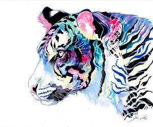 art, tiger, and rainbow image