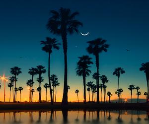 moon, summer, and beach image