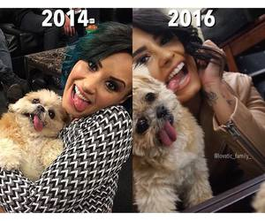2016, 2014, and celebrities image