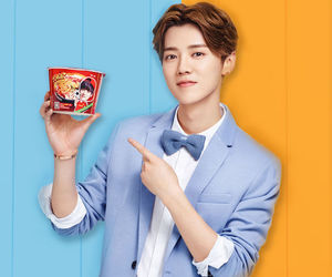handsome and luhan image