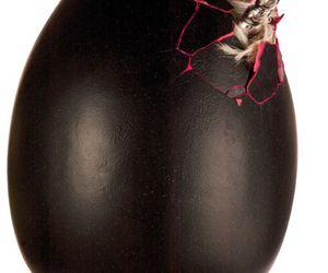 black, egg, and unicorn image