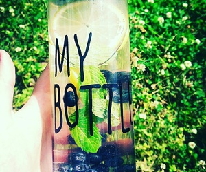 berries, bottle, and day image